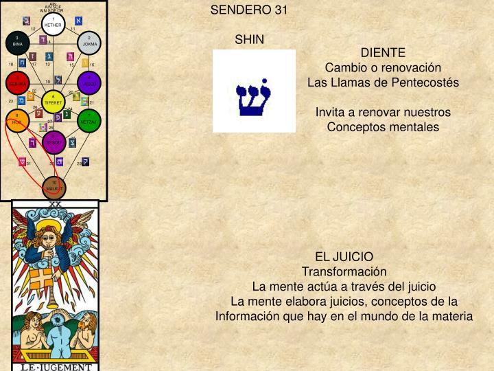 SENDERO 31