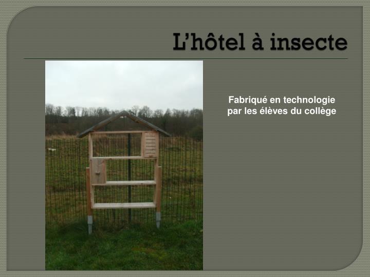 L'hôtel à insecte