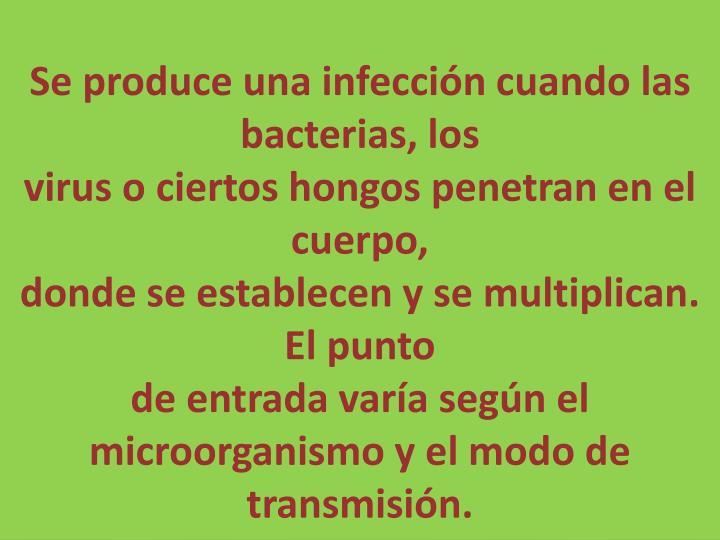 Se produce una infección cuando las bacterias, los