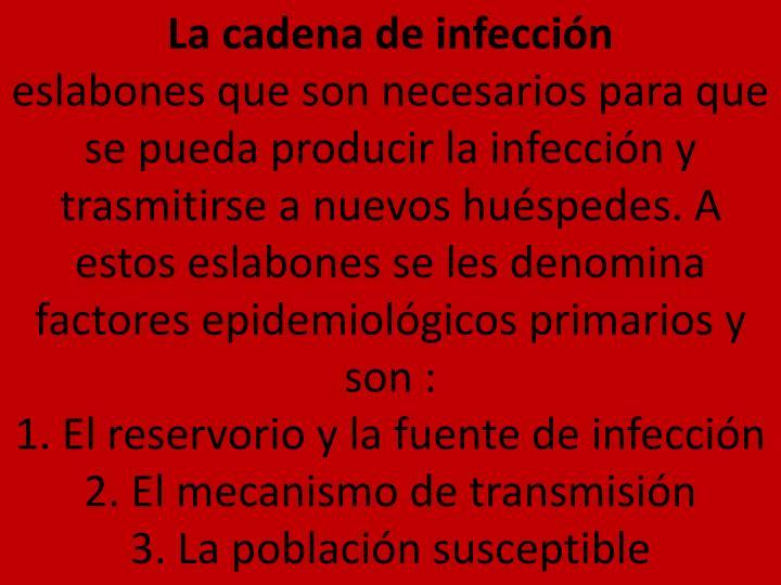 La cadena de infección