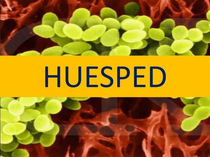 HUESPED