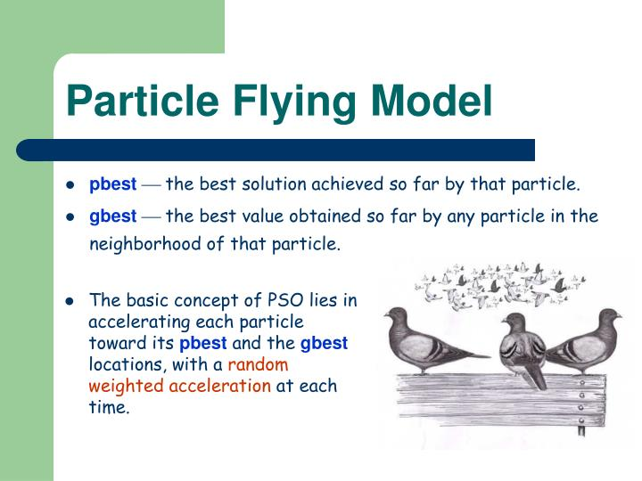 Particle Flying Model