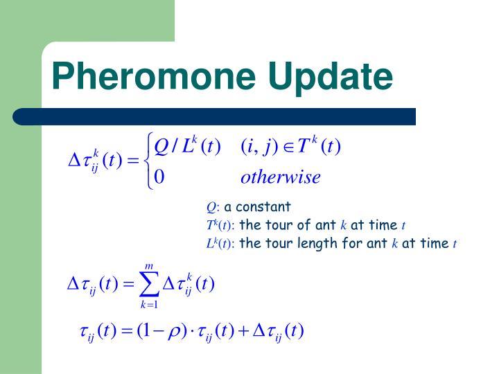 Pheromone Update