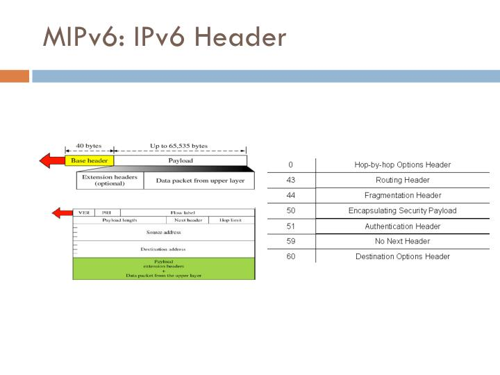 MIPv6: IPv6 Header