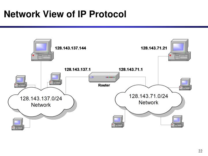 Network View of IP Protocol