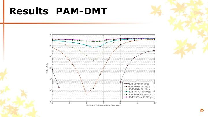 Results	PAM-DMT