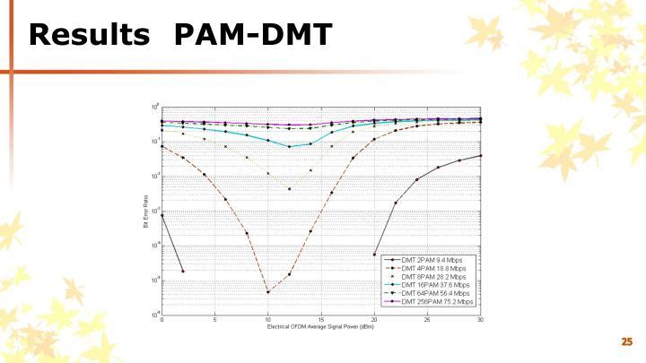 ResultsPAM-DMT