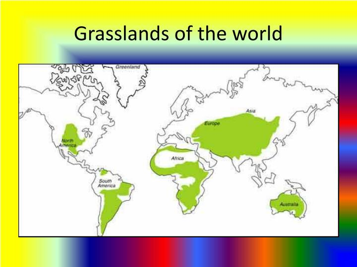 Grasslands of the world