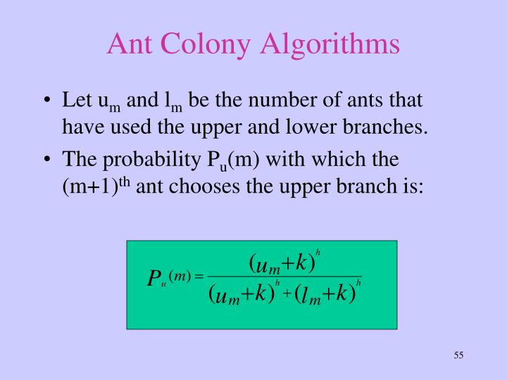 Ant Colony Algorithms