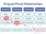singular plural relationships