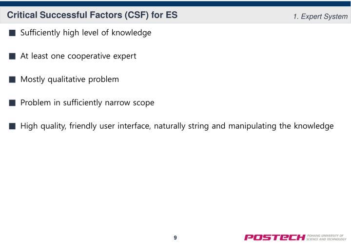 Critical Successful Factors (CSF) for ES