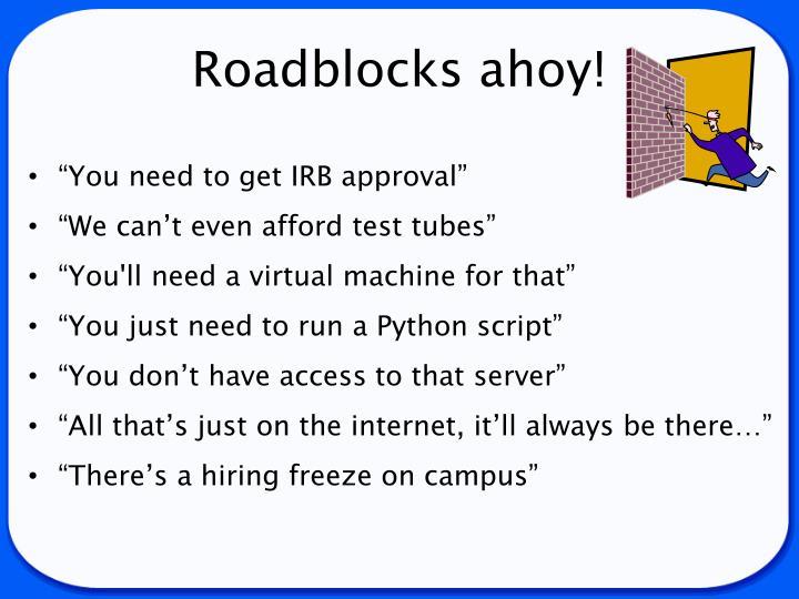 Roadblocks ahoy!