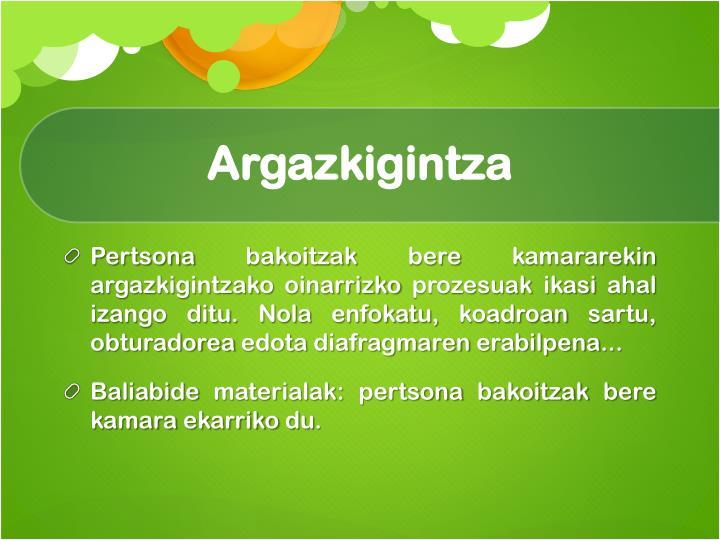 Argazkigintza