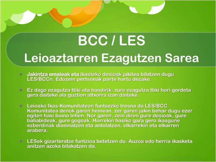 BCC / LES