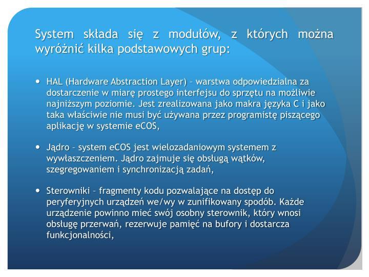 System składa się z modułów, z których można wyróżnić kilka podstawowych grup: