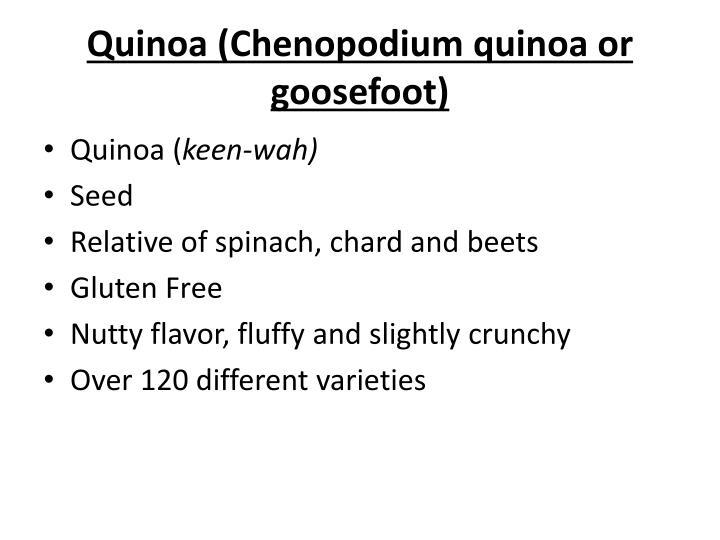 Quinoa (