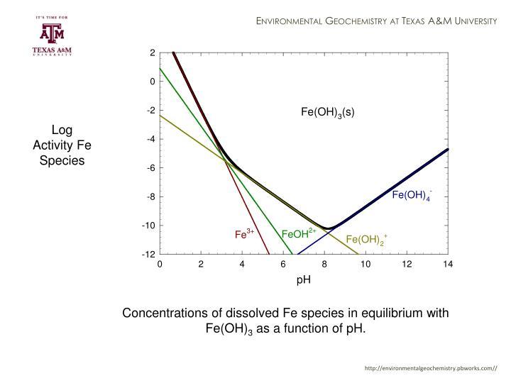 Log Activity Fe Species