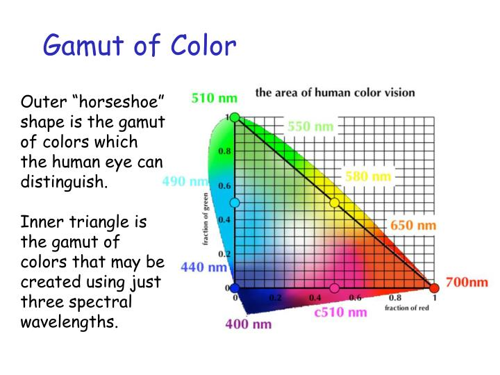 Gamut of Color