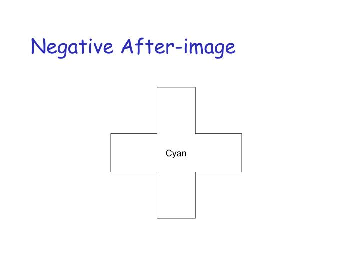 Negative After-image