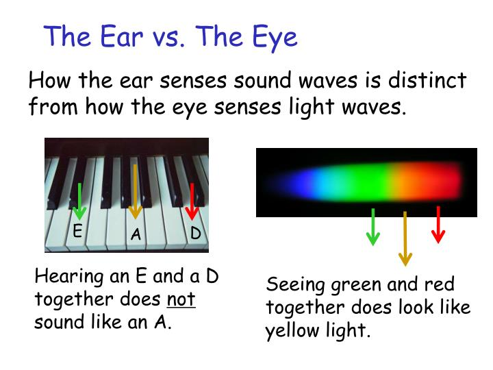 The Ear vs. The Eye