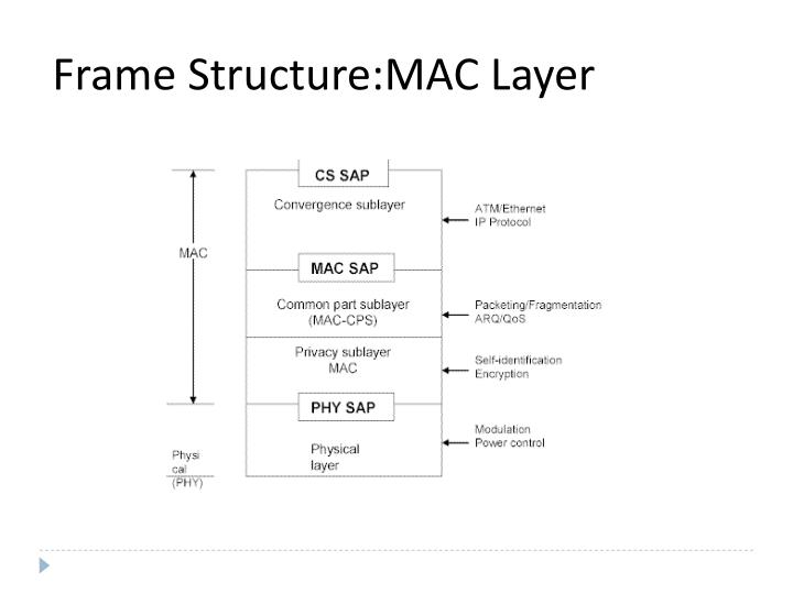 Frame Structure:MAC Layer