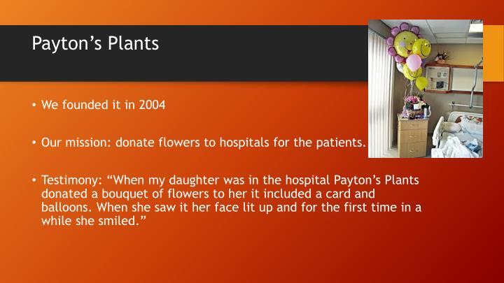 Payton's Plants