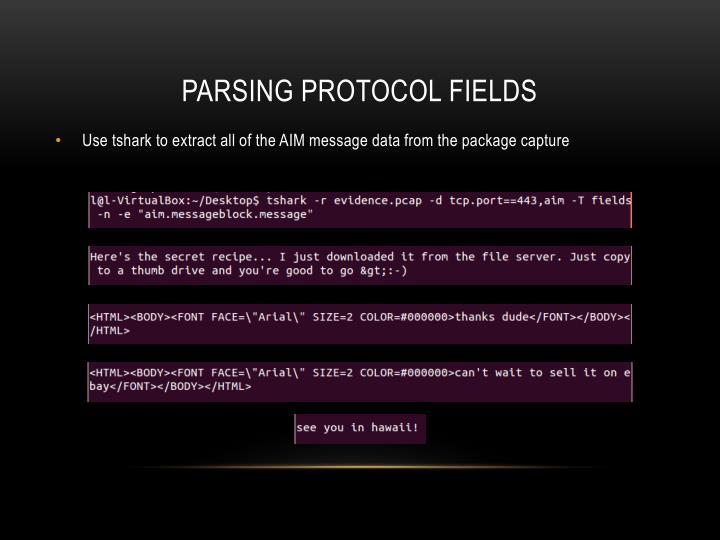 Parsing Protocol fields
