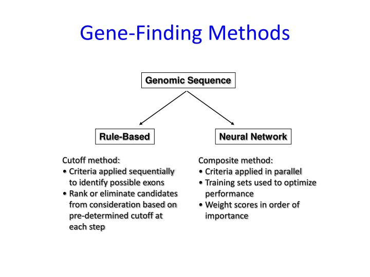 Gene-Finding Methods