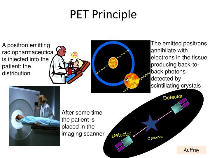 PET Principle