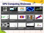 gpu computing showcase