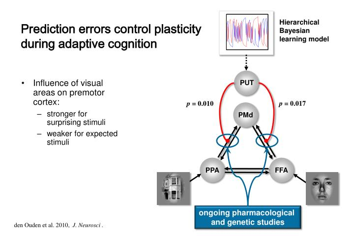 Prediction errors control plasticity during adaptive cognition