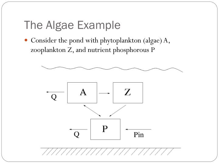 The Algae Example
