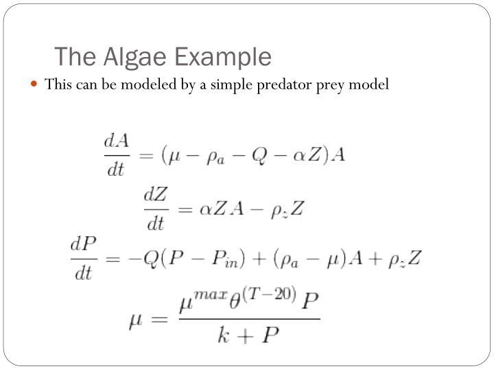 The Algae Example