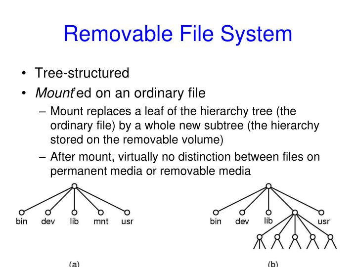 Removable File System
