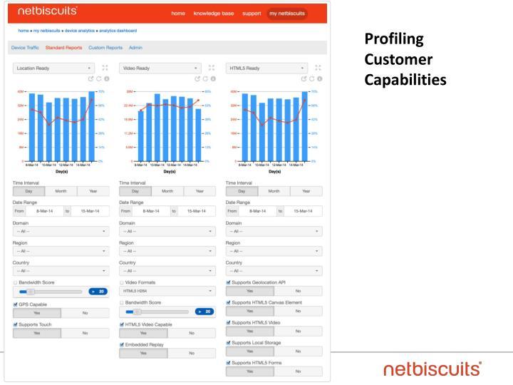 Profiling Customer Capabilities