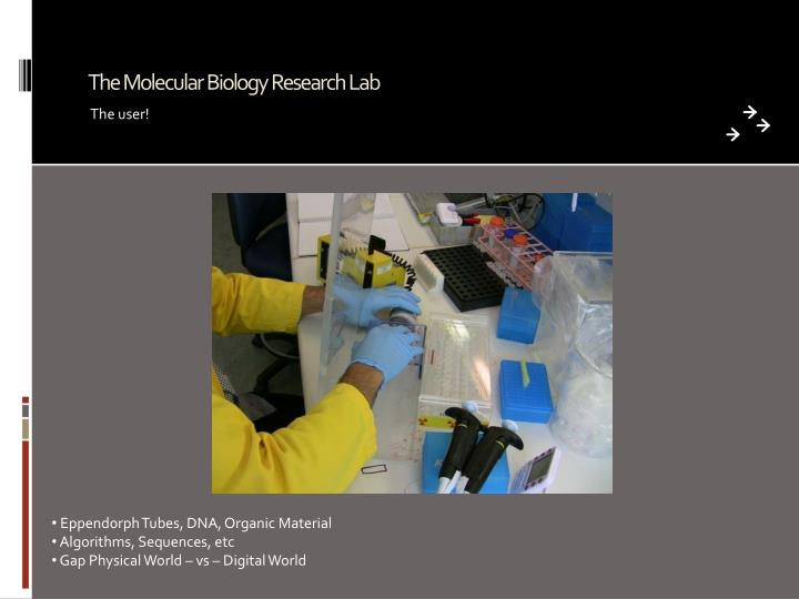 The Molecular Biology Research Lab