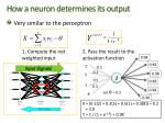 how a neuron determines its output