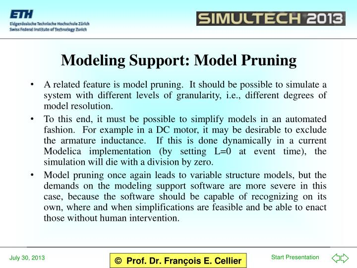 Modeling Support: Model Pruning