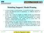 modeling support model pruning