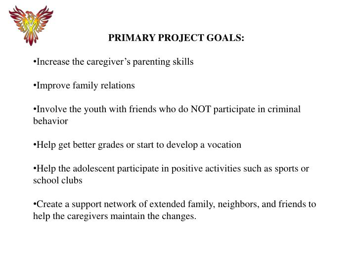 PRIMARY PROJECT GOALS: