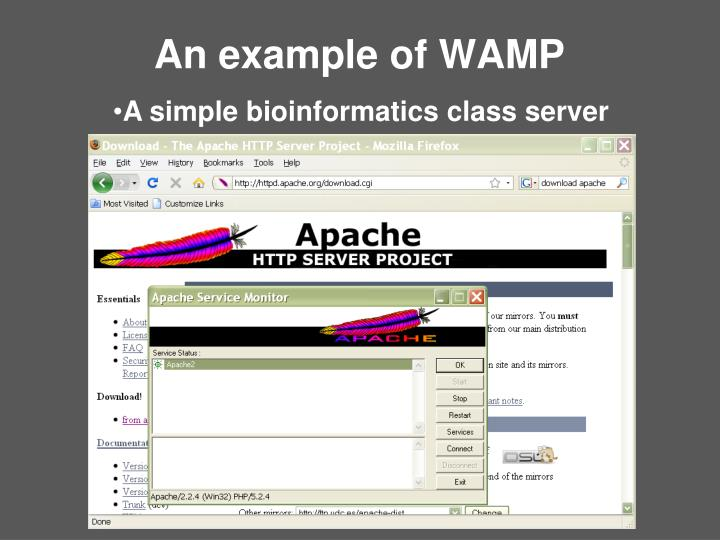 An example of WAMP