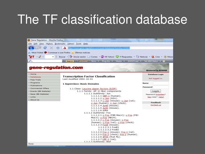 The TF classification database