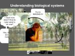 understanding biological systems