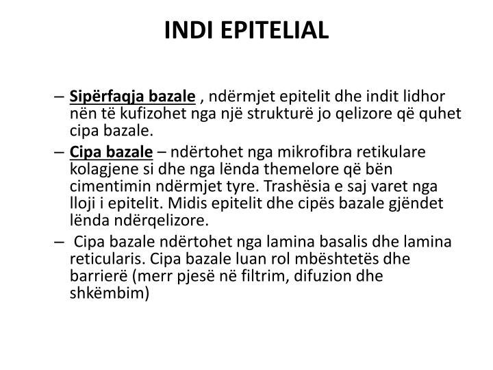 INDI EPITELIAL