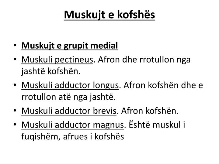 Muskujt