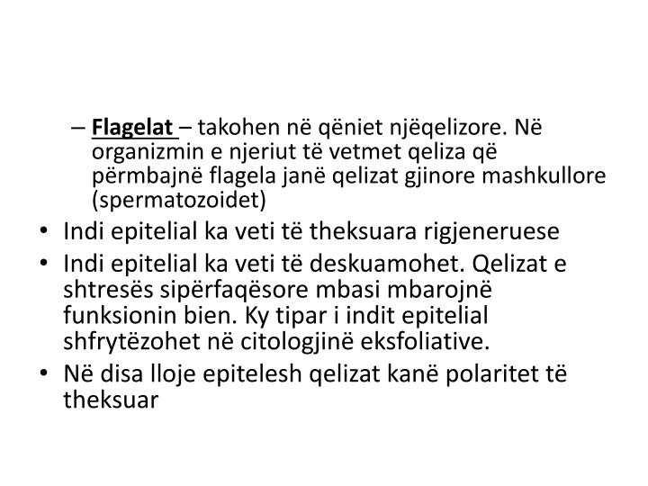Flagelat