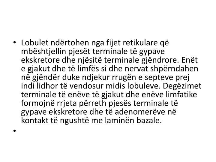 Lobulet