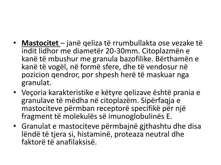 Mastocitet