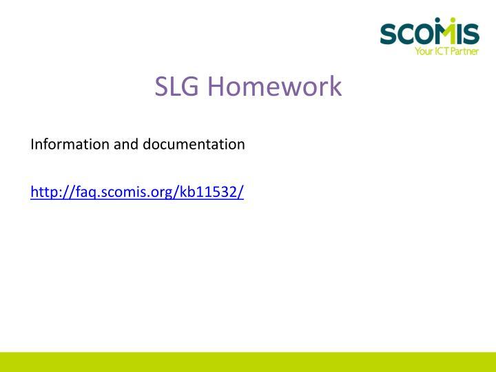 SLG Homework