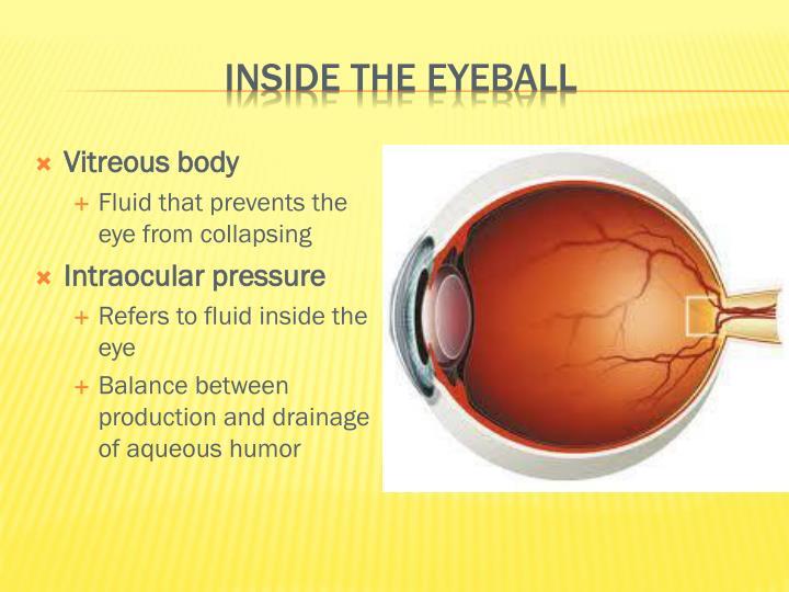 Inside the eyeball